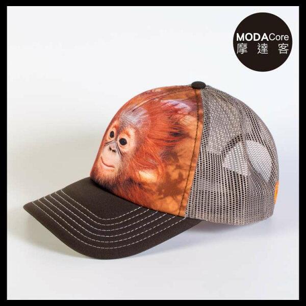 【摩達客】(預購)美國進口TheMountain小红毛猩猩藝術棒球帽網帽5-Panel新五分割帽