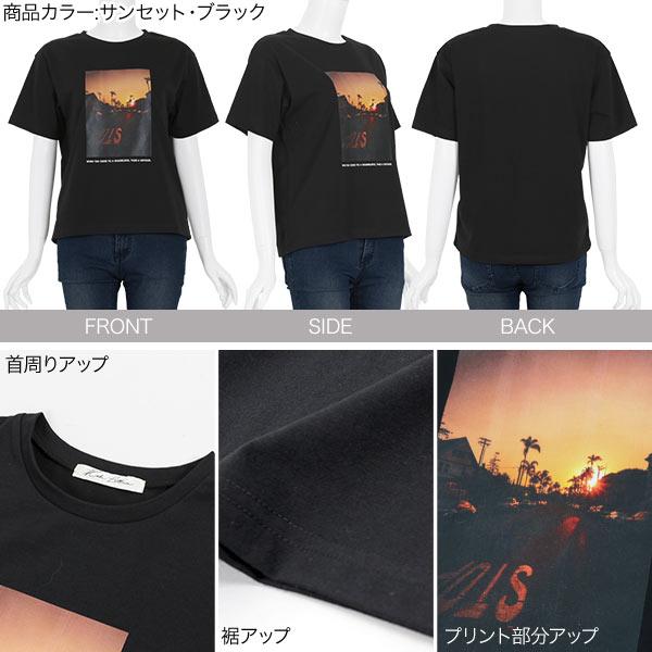 日本Kobe lettuce /  個性印花棉質短袖上衣 T恤  / -c3877-日本必買 日本樂天直送(1990) 2