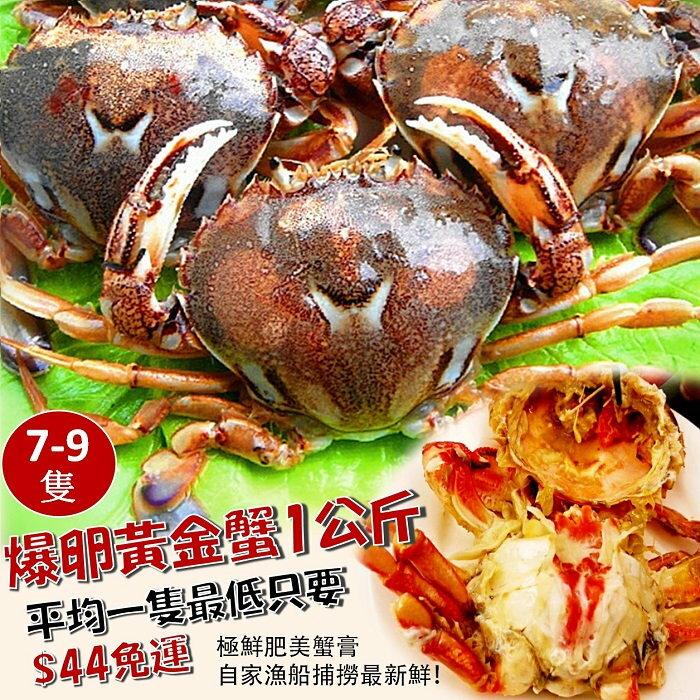 【雞籠好魚】免運!! 爆卵黃金蟹(1000g+-5%/1包,約7-9隻)★秋天的盛產螃蟹季★超飽滿豐富的蟹黃★