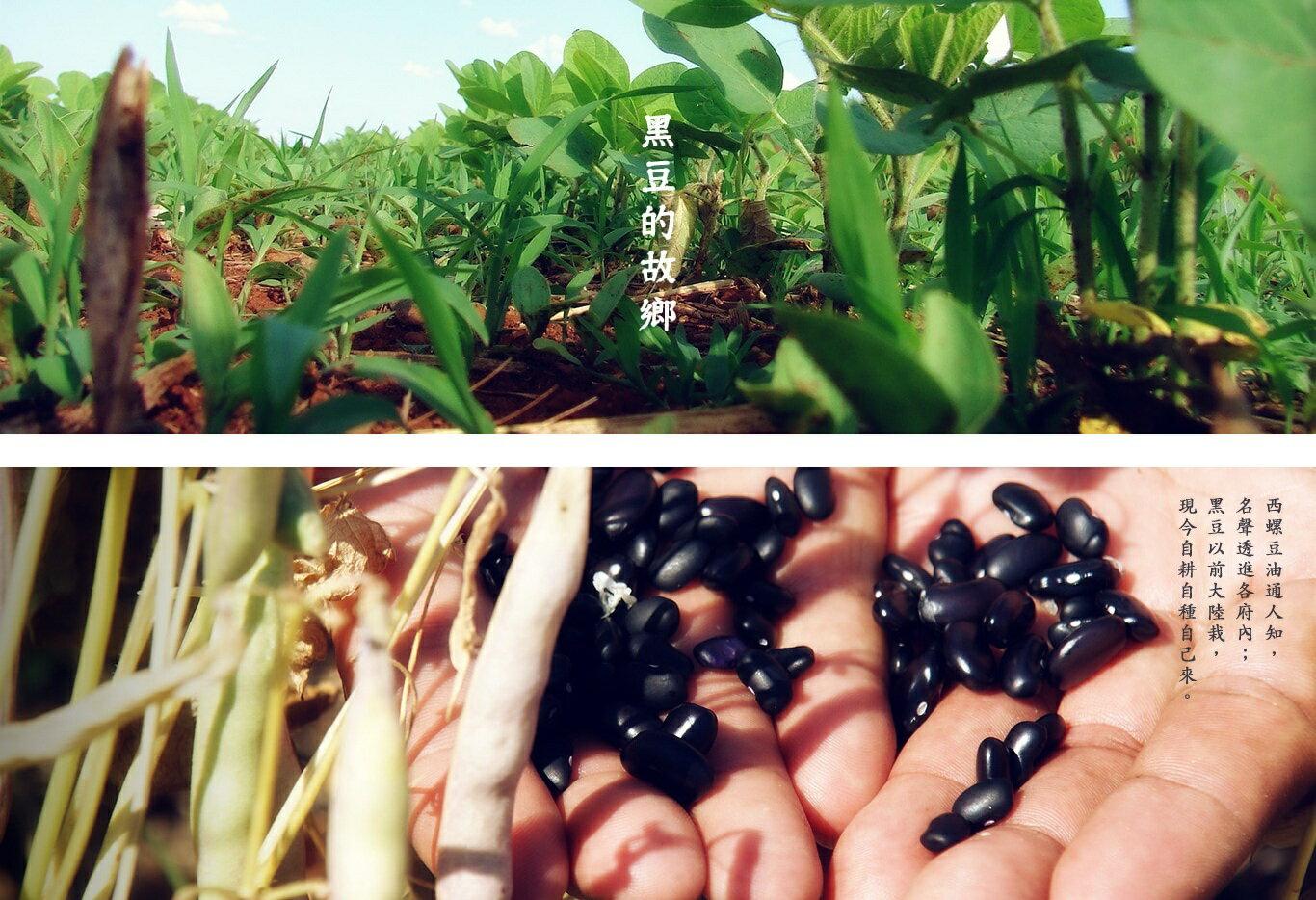 【將軍黑豆】將軍碳焙黑豆300克/罐