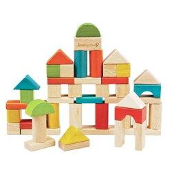 德國EverEarth環保系寶寶成長木玩 50塊綜合積木組