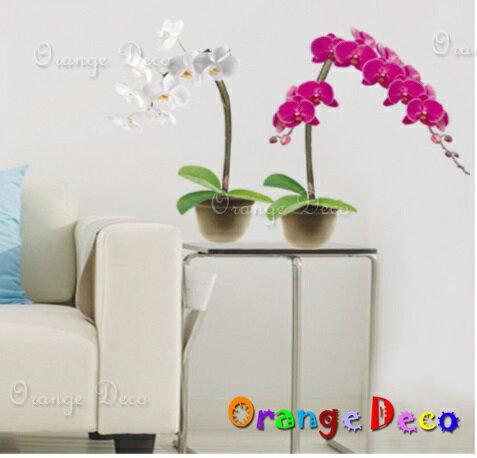 蝴蝶蘭 DIY組合壁貼 牆貼 壁紙 無痕壁貼 室內設計 裝潢 裝飾佈置【橘果設計】