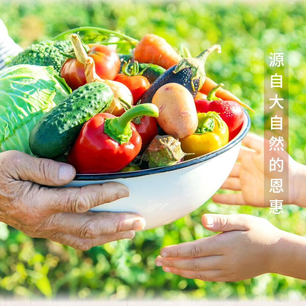 綜合蔬果脆片160公克【每日優果】 6