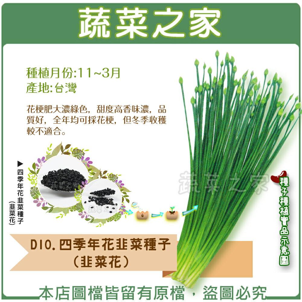 【蔬菜之家】D10.四季年花韭菜種子(韭菜花)60顆、5克(約1130顆)(共有2種包裝可選)