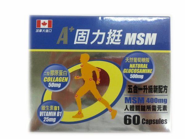A+固力挺MSM 60粒 [橘子藥美麗]