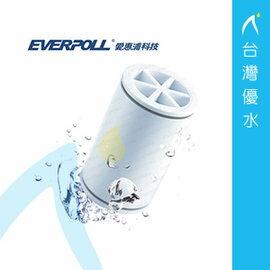 【免運費】EVERPOLL 愛惠浦科技 微分子潔膚活水器專用濾芯(MKC)