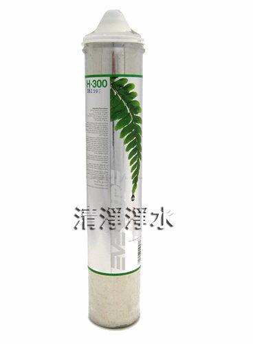 H300、美國PANTAIR H300家用強效抑菌型濾心,平輸品升級價75元。