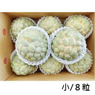 【樂活網嚴選】產地直送台東正宗大目釋迦 五斤精緻禮盒(小/8粒裝)
