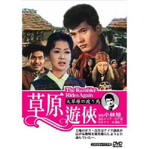 草原遊俠DVD