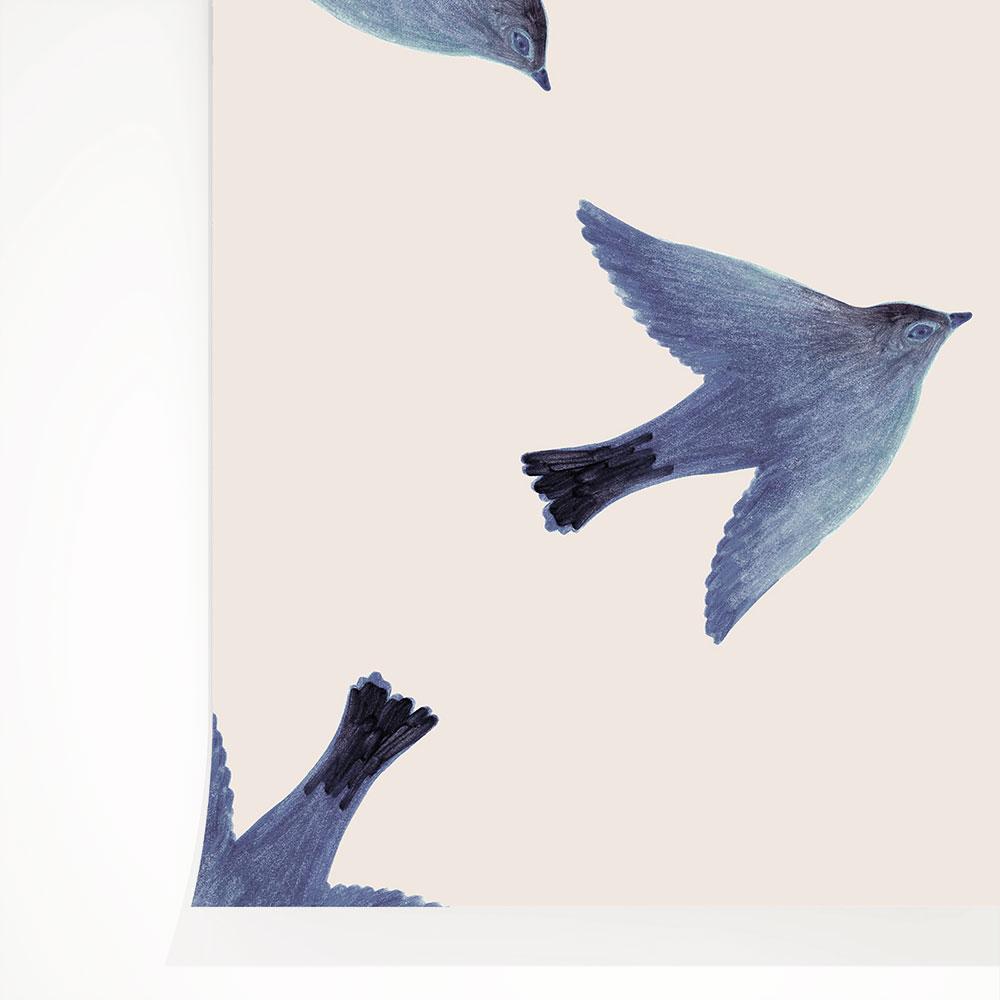法國壁紙  鳥紋  兒童房壁紙  Season Paper Parrots PP-S1901  壁紙 2