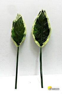 [橘子空間裝置藝術] 6入一把. 人造白邊花蕉葉片 2種尺寸可選 ☆人造花.花藝.插花配件~婚禮.派對.餐廳.居家佈置☆