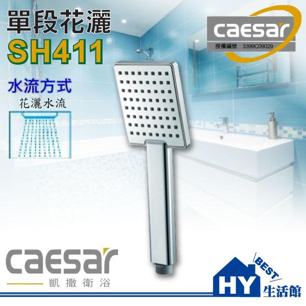 凱撒 衛浴 單段蓮蓬頭把手 SH411~HY 館~水電材料