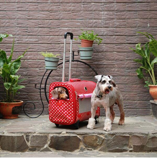 寵物推車/包包/提籠│八公斤四輪寵物拉桿箱|聖誕紅