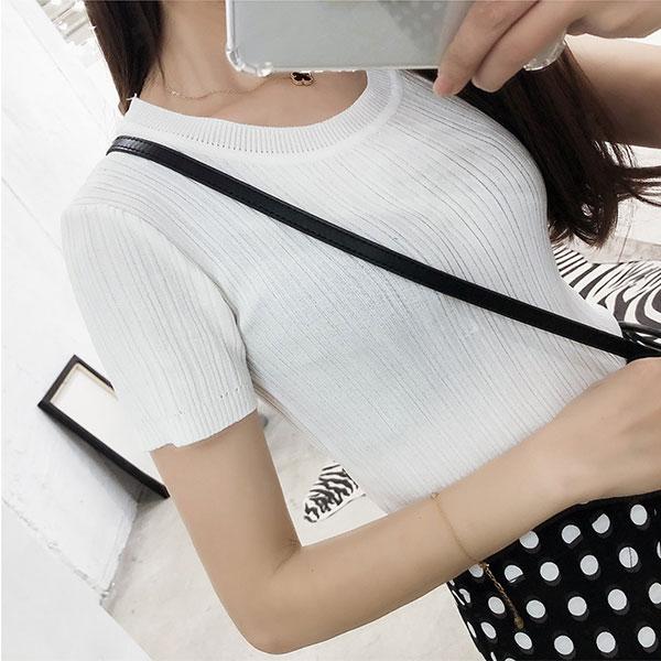 壓紋 冰涼T 微透 冰絲 針織 彈性 圓領 短袖 上衣 素面 顯瘦 大奶 百搭 多色 性感 韓國 ANNA S.