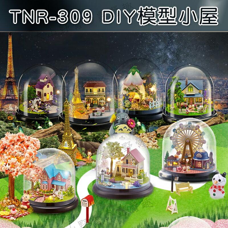 【露營趣】中和安坑 TNR-309 DIY模型小屋 手工拼裝房子 袖珍屋 娃娃屋 模型屋 3D拼圖 手工藝品 智趣屋