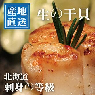 日本進口刺身等級大干貝1入