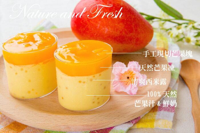 【芒果季】芒果奶酪小6杯裝240 4