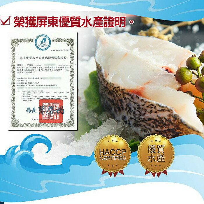 【曾家石斑漁莊】石斑魚-肉質細嫩-700公克(整尾)