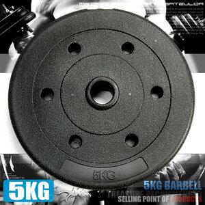 5KG水泥槓片^(單片5公斤槓片.啞鈴片.槓鈴片.舉重量訓練. 健身器材. 哪裡買^)C1