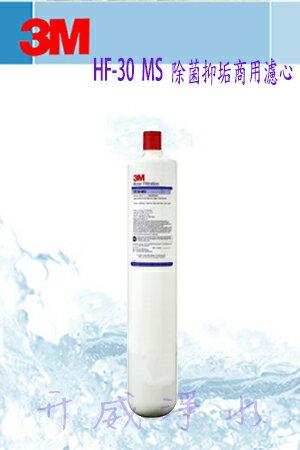 【全省免運費】3M HF-30 MS/HF30 MS高流量長效型除菌抑垢商用淨水器專用濾心【處理水量52,996公升】