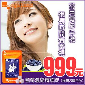 藍莓 藍莓錠 【推薦共3個月份】日本進口保健食品 到期日 2017年5月9日