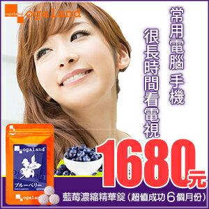 藍莓 藍莓錠 (胡蘿蔔素.花青素.枸杞)【超值成功 半年份】 日本進口保健食品 到期日 2017年5月9日