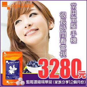 藍莓 藍莓錠 (胡蘿蔔素.花青素.枸杞)日本進口保健食品【約10+2個月份】