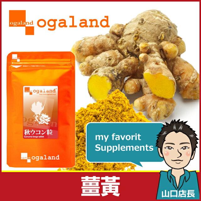 薑黃 (鬱金) 薑黃錠 日本進口保健食品 【約2個月份】 代謝 健康系