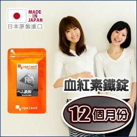 歐格蘭德日本保健食品:鐵血紅素鐵錠(鐵質)【約10+2個月份】日本進口保健食品