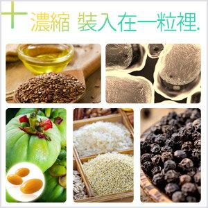 大豆卵磷脂膠囊 (含藤黃果) ☄ 營養補給 調整體質 健康維持【約1個月份】ogaland 2