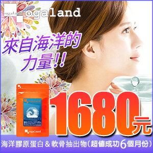 歐格蘭德日本保健食品:樂天商場膠原蛋白海洋膠原蛋白&軟骨抽出物日本製造【共6個月份】