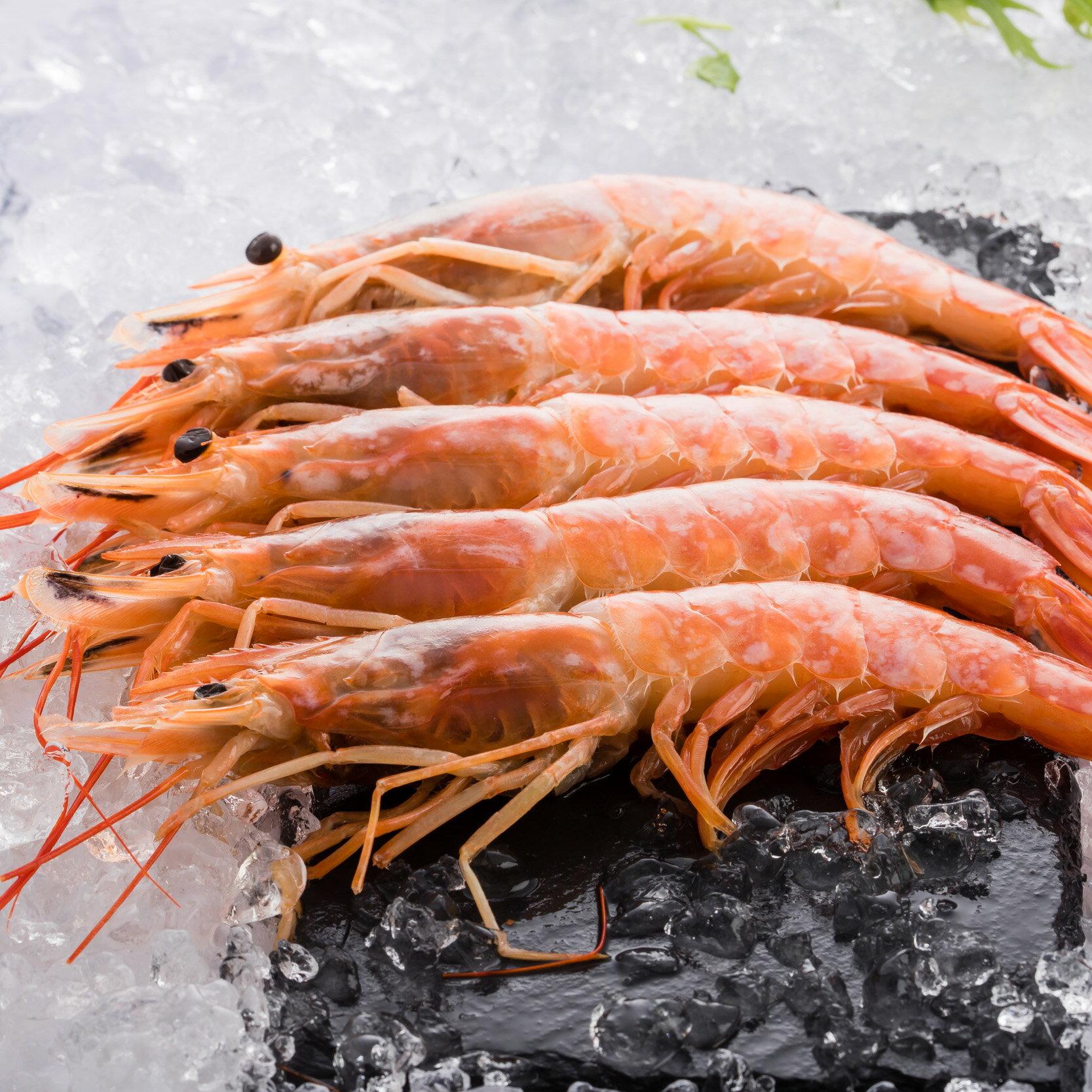 阿根廷L1天使紅蝦 生食級BIG SIZE 8-10隻/盒 (530G±5%/盒) | 派大鮮