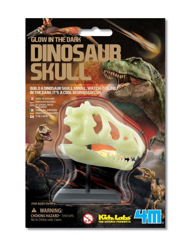 【4M】科學探索系列 - 螢光恐龍頭骨 Glow in the Dark Dinosaur Skull 00-03308