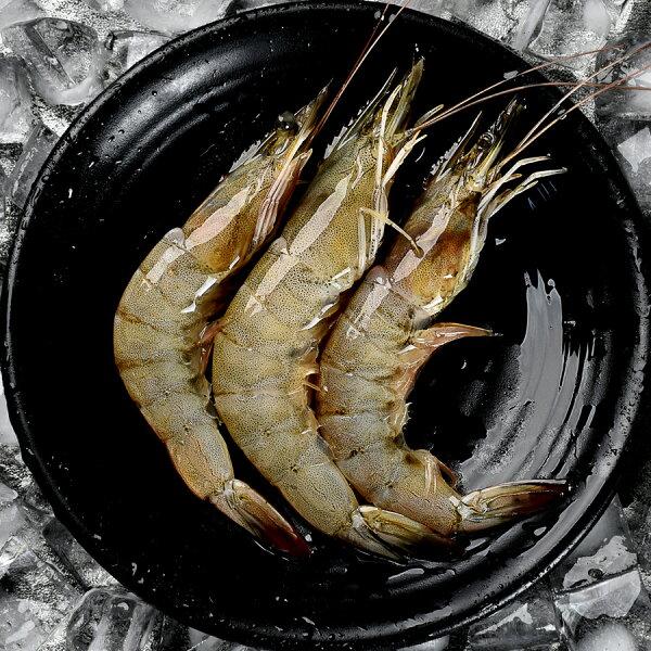 【璽富水產】台灣活凍鮮白蝦500g盒(約25~35隻)