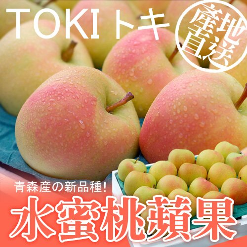 ~築地一番鮮~ 青森代表作TOKI水蜜桃蘋果 1盒 10~12顆  盒  2.5kg±10