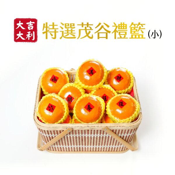 myselect:大吉大利-特選茂谷柑禮籃(小)(新春禮盒滿$3000免運)