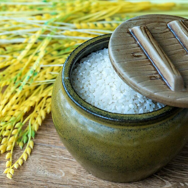 【?和燊】好米甕來 一人份小米甕 (600克)內有珍珠米及香米 台東產地 關山米 花東好米 伴手禮 真空包裝