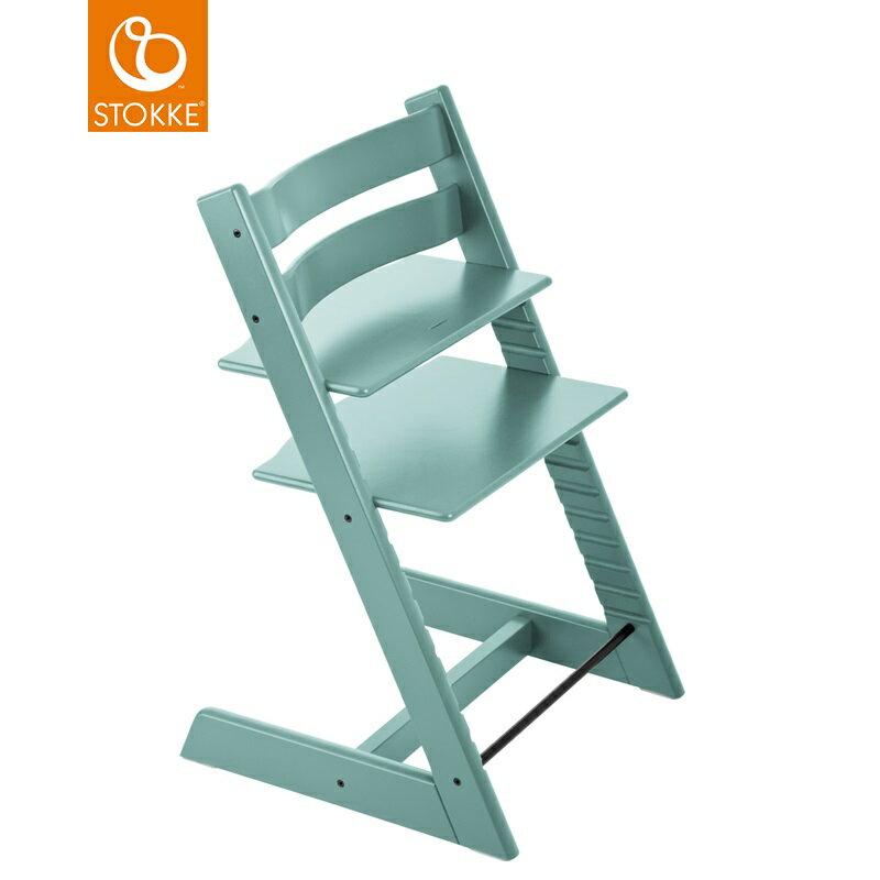 挪威【Stokke】Tripp Trapp 成長椅(水藍) 0