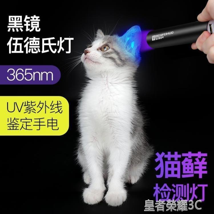 伍德氏燈伍德氏燈照貓蘚寵物貓尿真菌檢測手電筒紫外線熒光劑紫光家用驗鈔 摩登生活