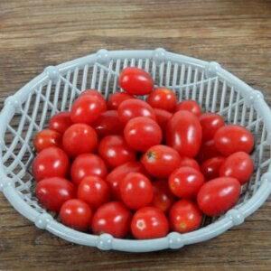 美麗大街【BF010E12】多功能水果收納籃乾果盤零食收納筐