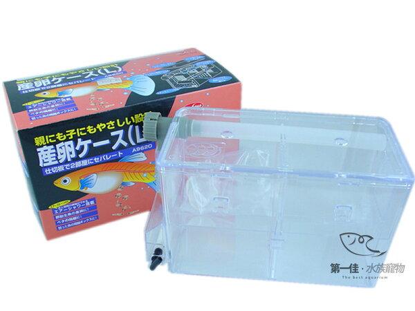 [第一佳水族寵物]台灣水族先生Mr.Aqua日本多功能產卵盒(繁殖盒)[L]!!免運費!!