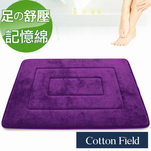 【LAKE】舒壓記憶綿吸水防滑踏墊-葡萄紫(40x60cm)