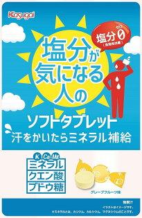 【橘町五丁目】日本春日井活力糖錠-61g▶全館滿499免運