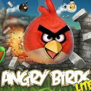 美麗大街【BFG124】熱賣超人氣憤怒鳥AngryBird造型夾式集線器/繞線器