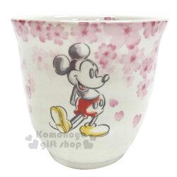 〔小禮堂〕迪士尼 米奇米妮 日製無把陶瓷杯《粉.櫻花》茶杯.精緻盒裝