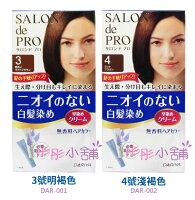 DARIYA Pro 沙龍 染髮劑 白髮 日本