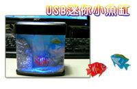 【aife life】USB迷你小魚缸/水缸,可用碳鋅電池,辨公室輕鬆紓壓小物