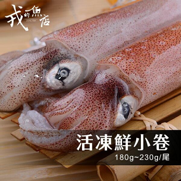 ~活凍鮮小卷~180g~230g  尾~超 ,鮮甜多汁,超Q嫩 中!~戎的魚店~