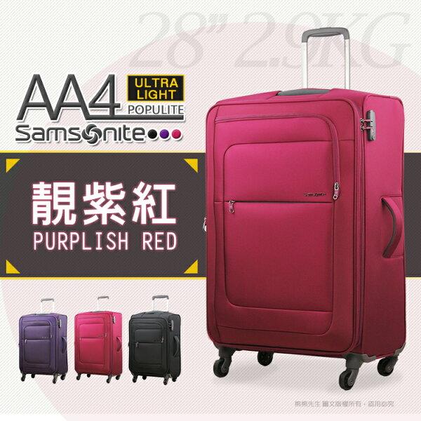 Samsonite新秀麗24吋行李箱旅行箱布箱AA4
