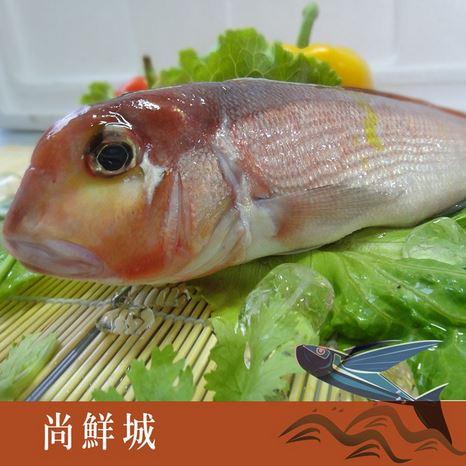 ~尚鮮網~ 現流馬頭魚 ^(200g^) ~5^%